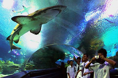 aquaria2 klcc